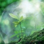 Экология личного энергетического пространства