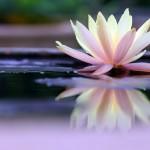 Как легко начать практиковать медитацию. Баним распространенные мифы