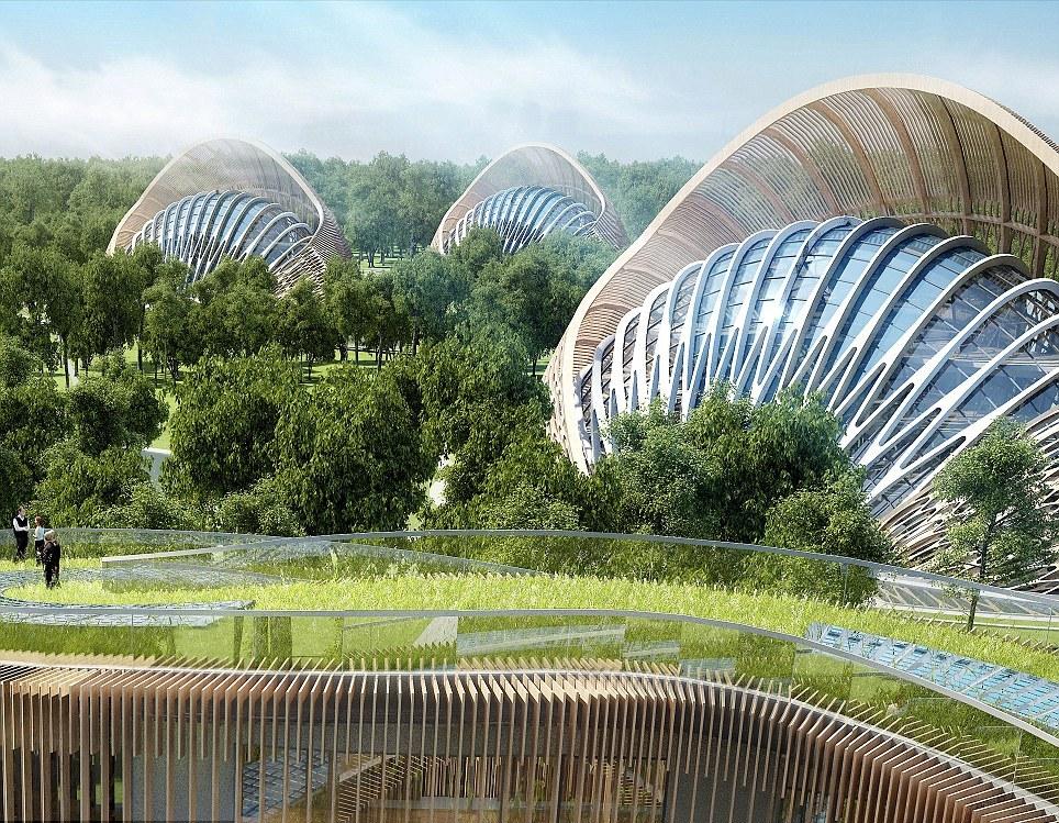экологичное будущее