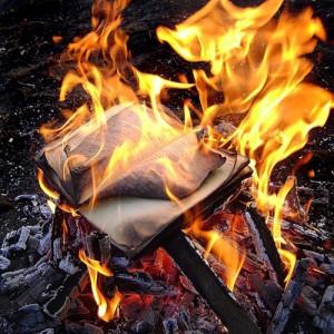 books-fire