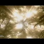 Медитация: Лучи Света