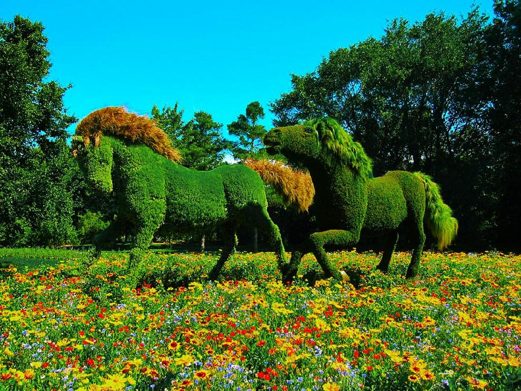 Хиросимский ботанический сад