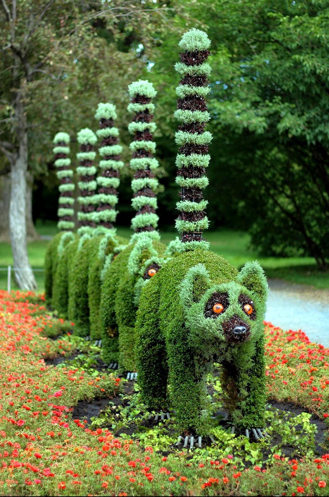 Кустарники для сада поделки
