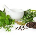 Полезные для мозга антиоксидантные травы и приправы